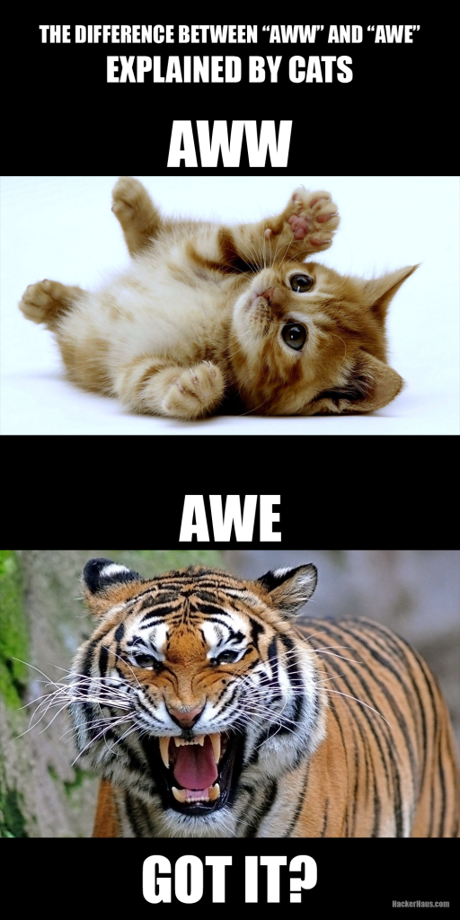 aww vs awe